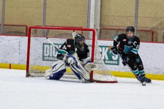 HockeyGoalieEquipment