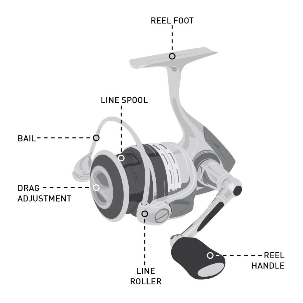 How to Buy the Right Reel