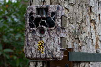 trail camera basics 17