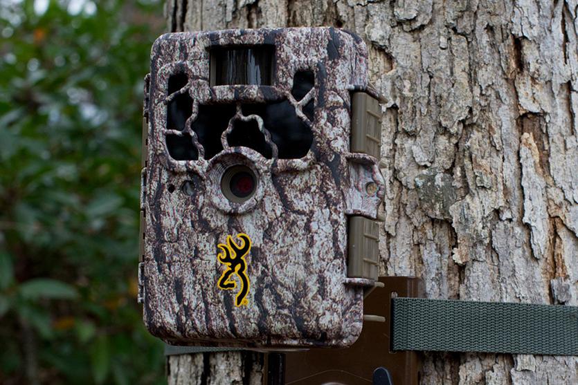 trail camera basics 17