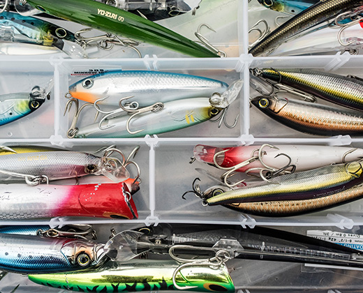 Baits and Lures