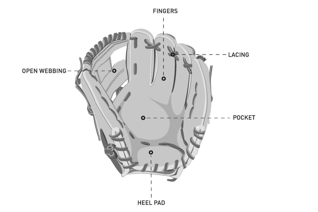 baseball Infielder Glove