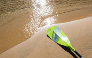 How to Buy a Stand Up Paddleboard Paddle