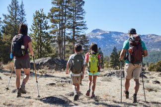 A family of four is hiking.
