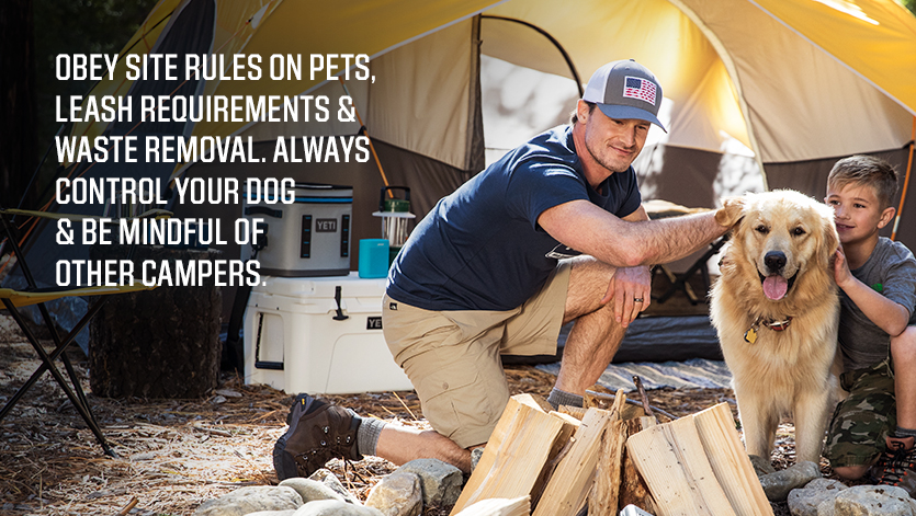 TIPS-FOR-CAMPING-WITH-YOUR-DOG-1