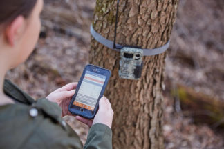 hunter using a cellular trail camera in the woods