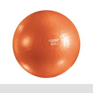 Fitness Gear Premium Stability Ball